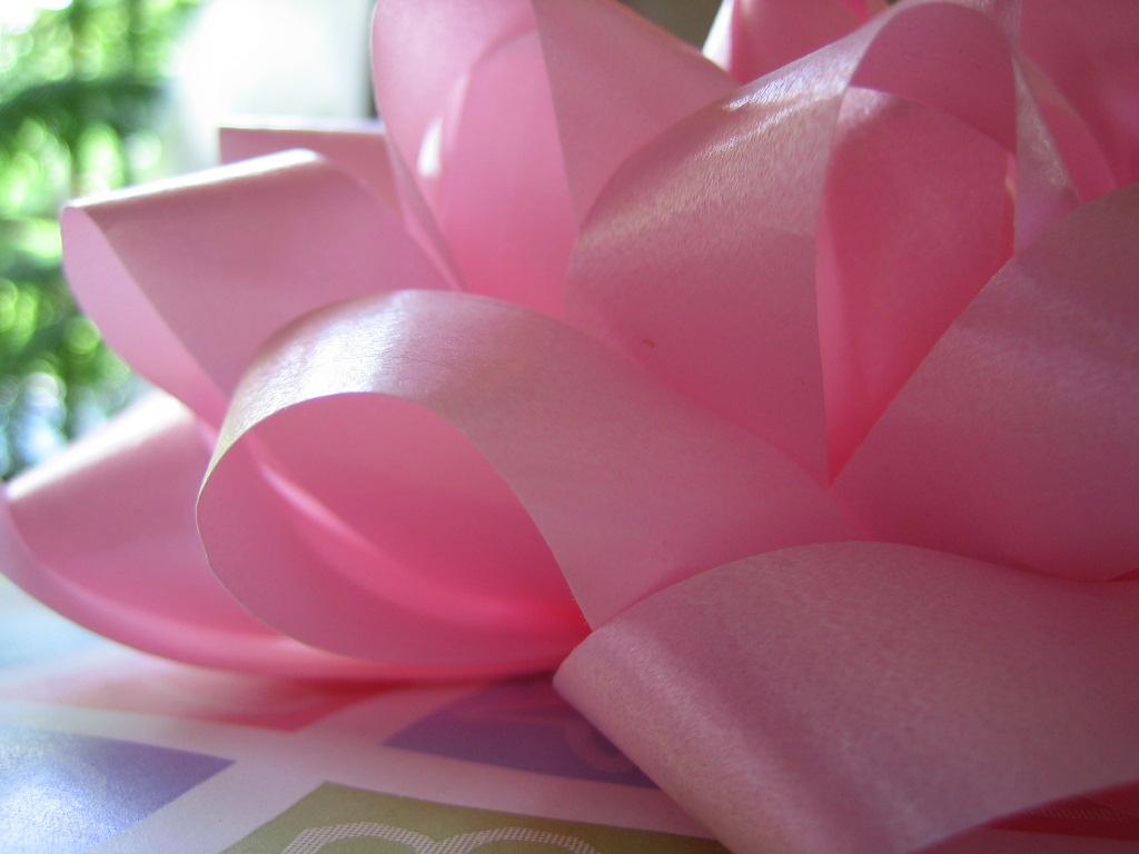 Sansofé regalo Día de La Madre