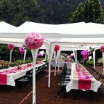 Montaje de el evento de Catering de Tasca Sansofé