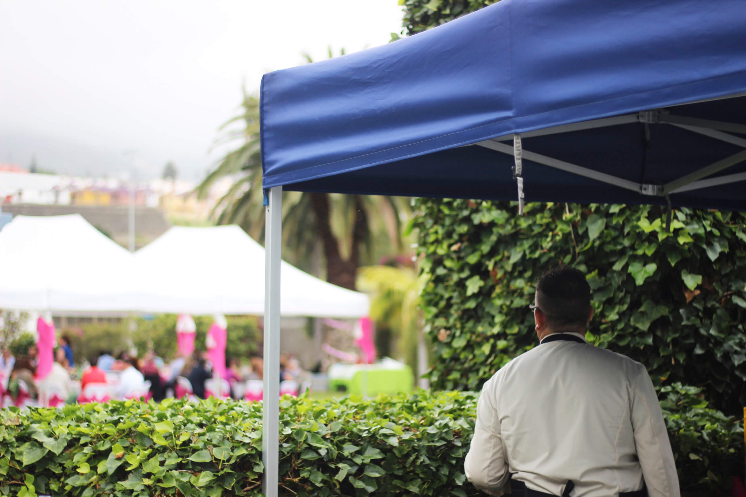 Tasca Sansofé comer bien en Tenerife 2018